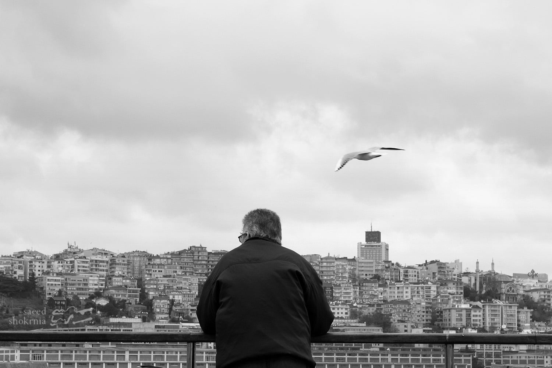 Sea, Minimal Photography, Istanbul, Photo, Bird, Man