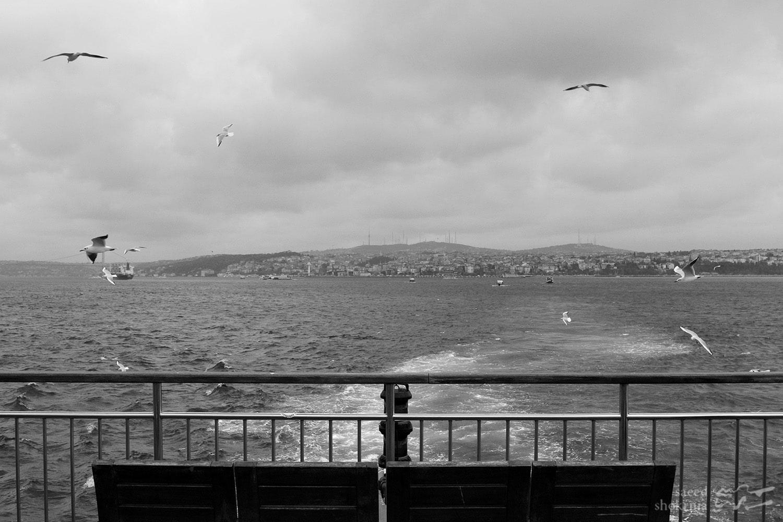 Sea, Minimal Photography, Istanbul, Photo, Birds