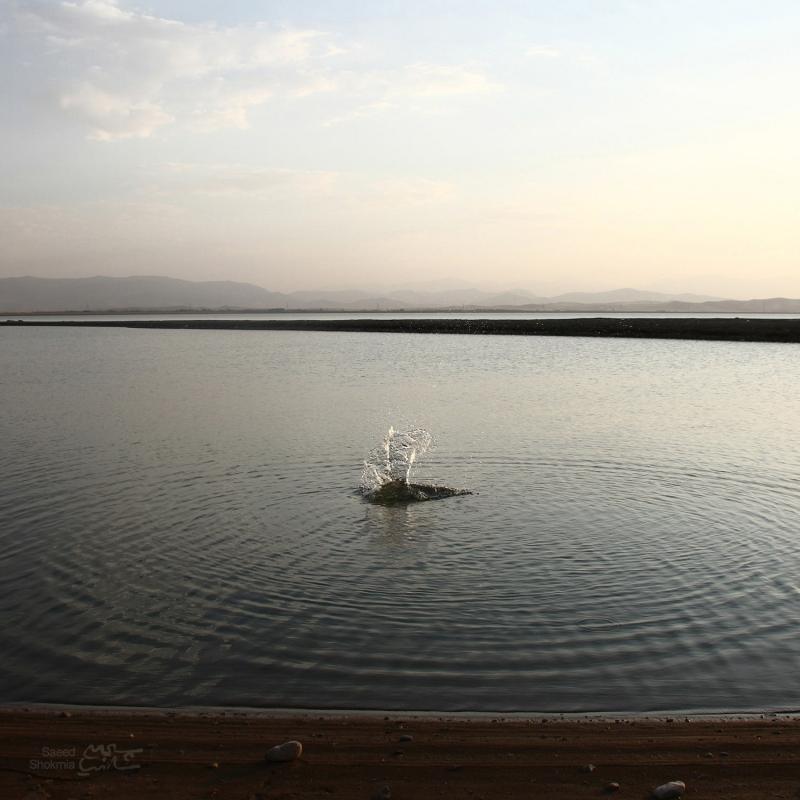 Lake, Minimal Photography