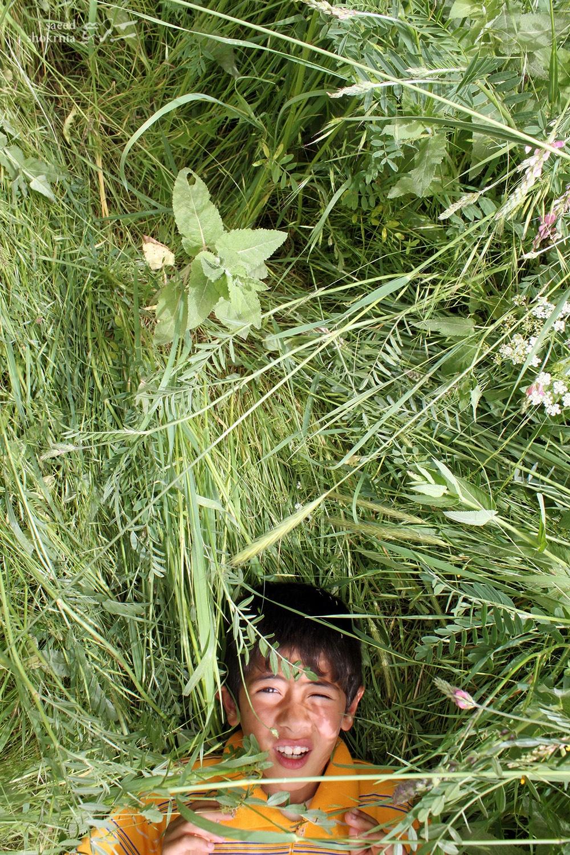 Eyes, Grass, Boy, Photo, Photography